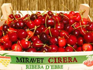 Cerezas de Miravet